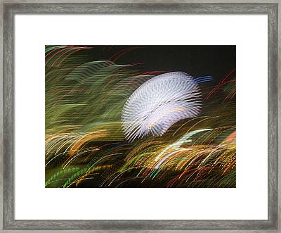Framed Print featuring the photograph Pretty Little Cosmo - 1 by Larry Knipfing