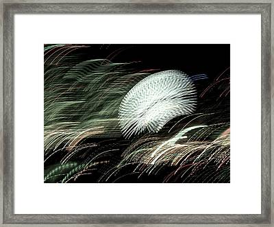 Framed Print featuring the photograph Pretty Little Cosmo - 11 by Larry Knipfing