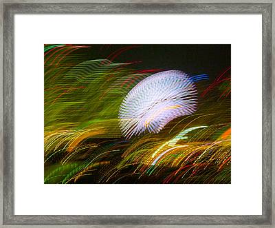 Framed Print featuring the photograph Pretty Little Cosmo - 3 by Larry Knipfing