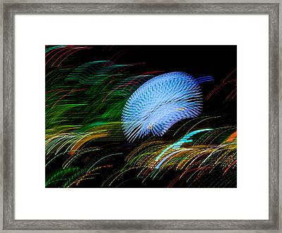 Framed Print featuring the photograph Pretty Little Cosmo - 4 by Larry Knipfing