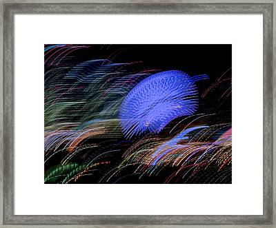 Framed Print featuring the photograph Pretty Little Cosmo - 5 by Larry Knipfing