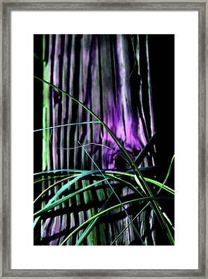 Pretty Natural Framed Print by Susanne Van Hulst