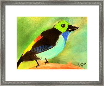Pretty Paradise Tanager Framed Print