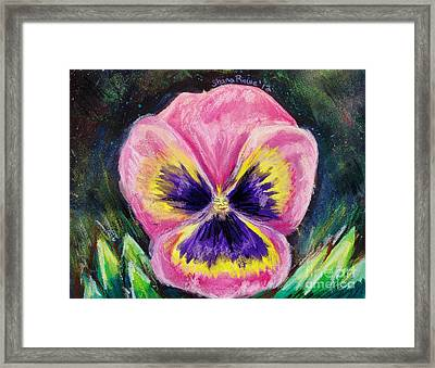 Pretty Pink Pansy Person Framed Print by Shana Rowe Jackson