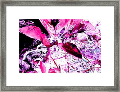Pretty Pink Weeds 5 Framed Print