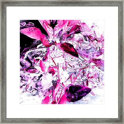Pretty Pink Weeds 6 Framed Print