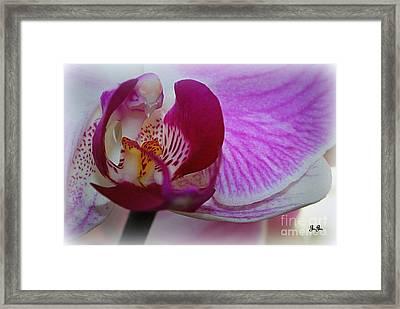 Pretty Please Framed Print by Geri Glavis