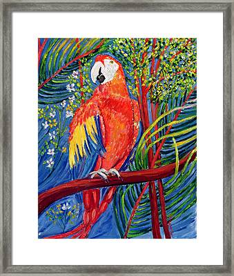 Pretty Polly Framed Print