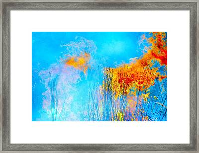 Pretty Prairie Framed Print by Abbie Loyd Kern