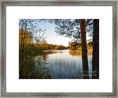 Pretty Spring Evening At The Lake Framed Print