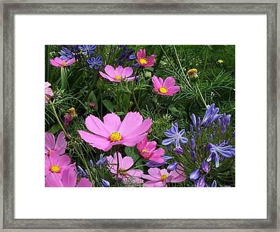 Pretty Spring Framed Print