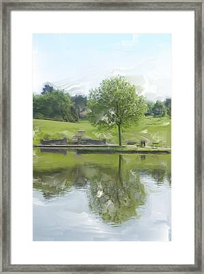Pretty Tree In Park Picture.  Framed Print by Christopher Rowlands
