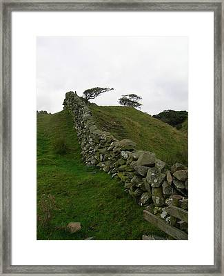 Prevailing Framed Print by Tom Trimbath