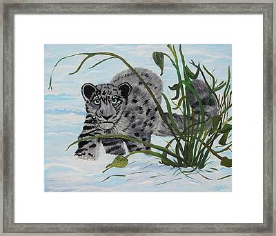 Preying In The Snow Framed Print by Carol Hamby