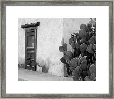 Prickly Passage Framed Print