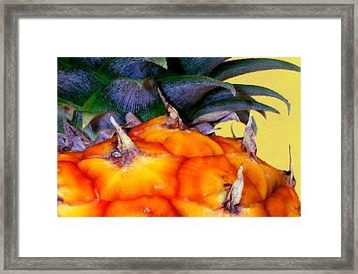 Prickly Sweet Hawaiian Pineapple Framed Print by James Temple