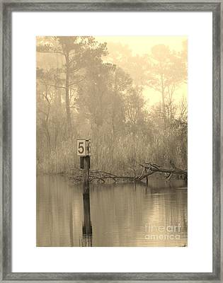 Framed Print featuring the photograph Pride by John Glass