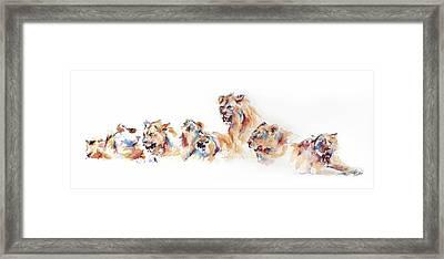 Pride Of Samburu Framed Print by Stephie Butler