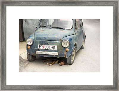 Dog Under Car Prilep Framed Print by For Ninety One Days