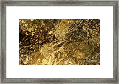 Primal Framed Print by Fred  Sheridan