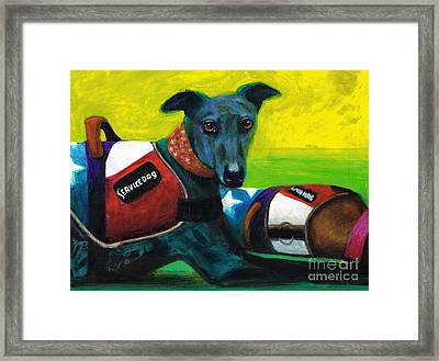 Primary Colors Framed Print by Frances Marino