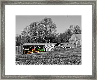 Primary Colors Framed Print by Kevin D Davis