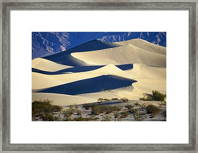 Primary Curves Framed Print