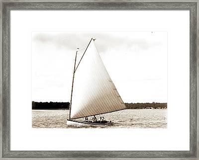Primrose, Primrose Yacht, Yachts Framed Print by Litz Collection