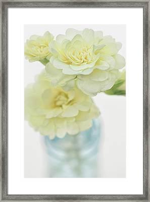 Primrose Vase Framed Print