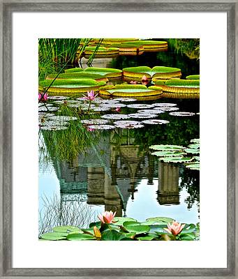 Prince Charmings Lily Pond Framed Print by Frozen in Time Fine Art Photography