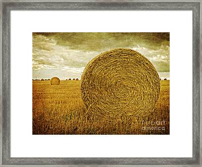 Prince Edward Island Pastoral Farm Fields Framed Print by Edward Fielding