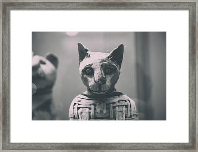 Prince Of Purrsia.. Framed Print