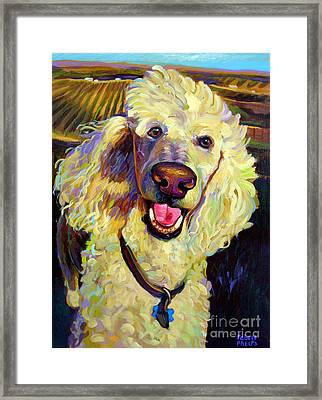 Princely Poodle Framed Print by Robert Phelps