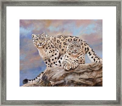Princes Of The Peaks Framed Print by David Stribbling