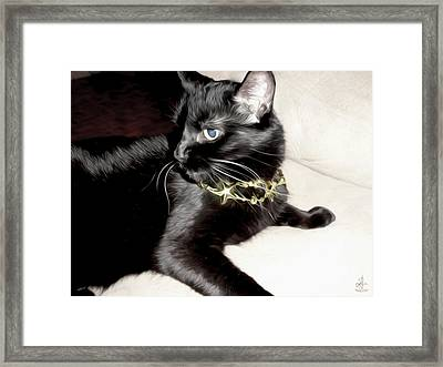 Framed Print featuring the photograph Princess Lucy by Pennie  McCracken