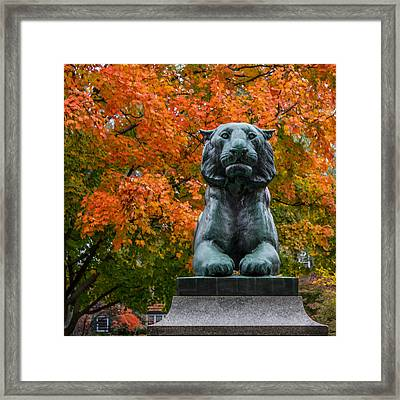 Princeton Panther Framed Print