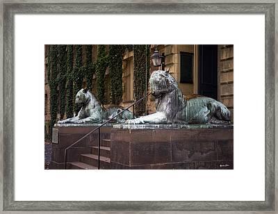 Princeton Tigers Framed Print
