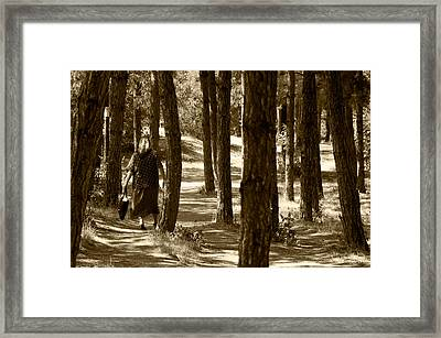 Prishtina Park Framed Print