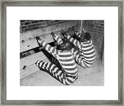 Prisoners In Stocks Framed Print by Underwood Archives