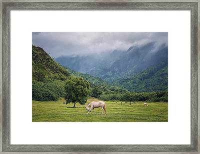 Framed Print featuring the photograph Pristine Pastures  by Hawaii  Fine Art Photography