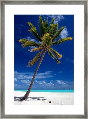Pristine Tropical Beach  Framed Print