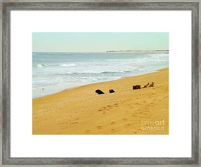 Private Beach Framed Print
