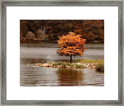 Private Island Framed Print by Jai Johnson