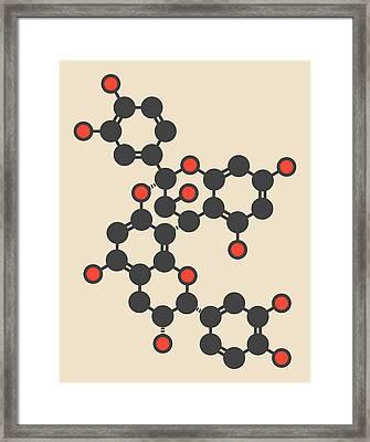 Proanthocyanidin A2 Molecule Framed Print by Molekuul