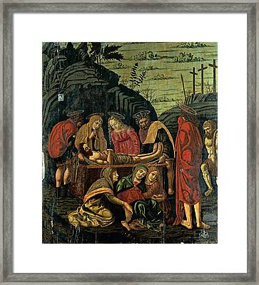 Probably Conti Bernardino De, Co-worker Framed Print