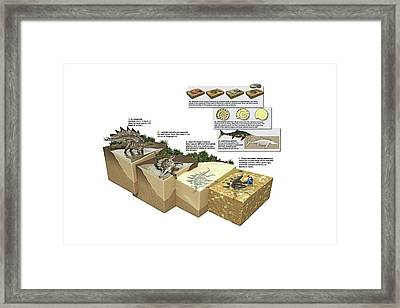 Process Of Fossilization Framed Print by Jose Antonio Pe�as