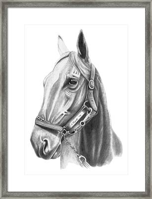 Profile Framed Print by Lawrence Tripoli