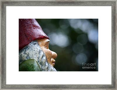 Profile Of A Garden Gnome Framed Print by Amy Cicconi