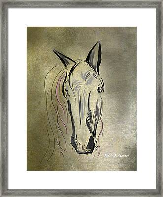 Profile Of A White Horse Framed Print by Angela A Stanton