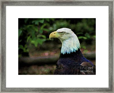 Profile Of America Framed Print